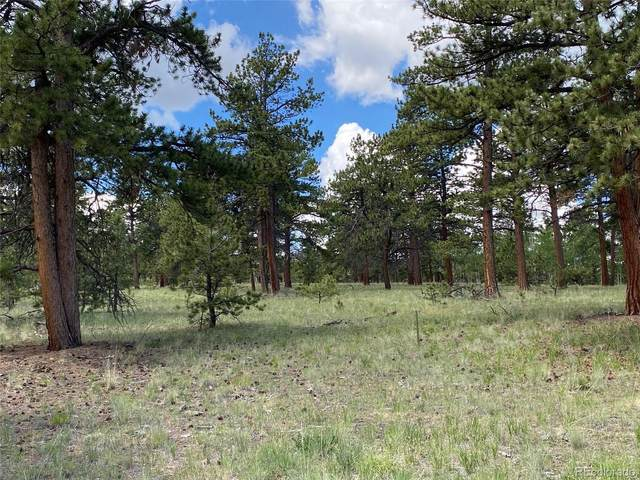 198 Hereford Drive, Hartsel, CO 80449 (#5499780) :: The DeGrood Team