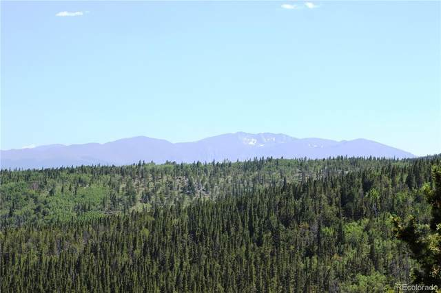 772.1 Forest Service, Black Hawk, CO 80422 (#5500401) :: The DeGrood Team