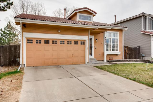 4616 Gibraltar Street, Denver, CO 80249 (#5502628) :: 5281 Exclusive Homes Realty