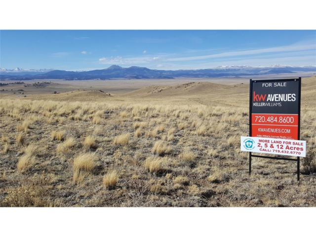 Dohanson Trail, Hartsel, CO 80449 (#5503375) :: Structure CO Group