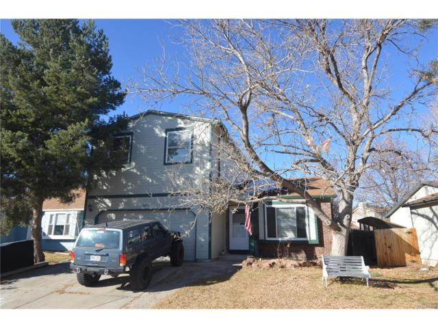 8433 Sandreed Circle, Parker, CO 80134 (#5503728) :: Colorado Home Finder Realty
