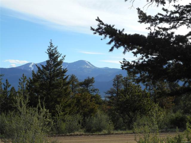 30491 National Forest Drive, Buena Vista, CO 81211 (MLS #5506937) :: 8z Real Estate