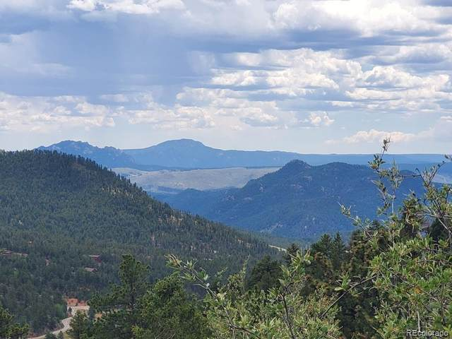31625 Half Peak Trail, Pine, CO 80470 (#5507202) :: The DeGrood Team