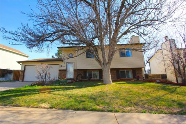 10722 Birch Court, Thornton, CO 80233 (#5509525) :: The Pete Cook Home Group