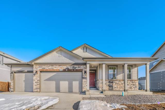 6818 Hayfield Street, Wellington, CO 80549 (#5513427) :: The Brokerage Group