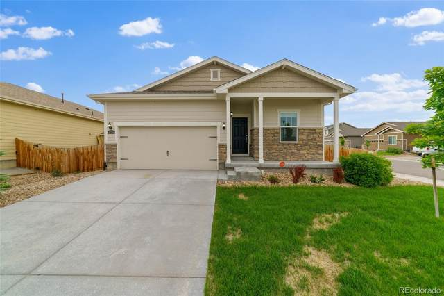 4599 E 95th Court, Thornton, CO 80229 (#5518429) :: Bring Home Denver with Keller Williams Downtown Realty LLC