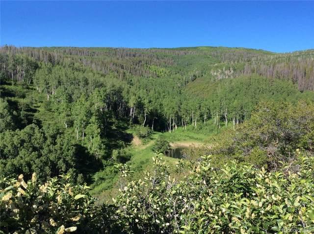 24425 Lone Tooth Trail, Oak Creek, CO 80467 (#5524377) :: The HomeSmiths Team - Keller Williams