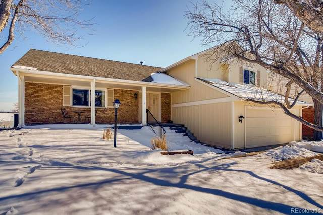 10646 W Devils Head, Littleton, CO 80127 (MLS #5526093) :: Keller Williams Realty