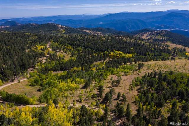 Robinson Hill, Lot 2 Road, Black Hawk, CO 80403 (MLS #5531672) :: Bliss Realty Group