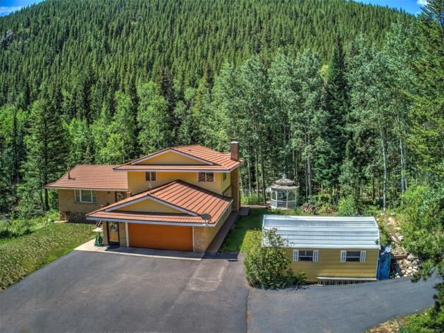 4253 Fall River Road, Idaho Springs, CO 80452 (#5535222) :: 5281 Exclusive Homes Realty