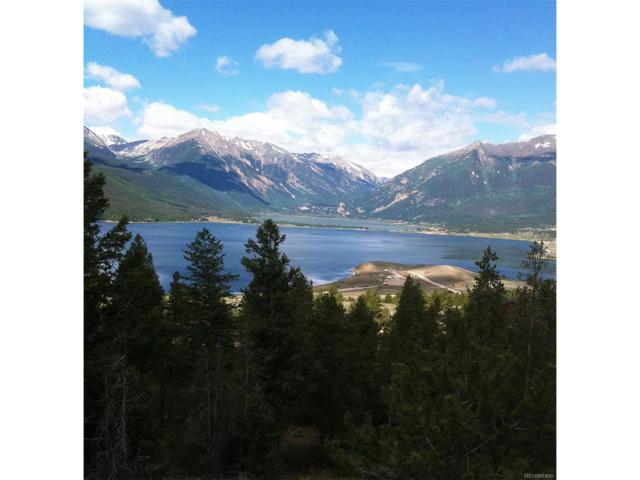 Prcl 1-C Trct 1, Twin Lakes, CO 81251 (MLS #5536506) :: 8z Real Estate