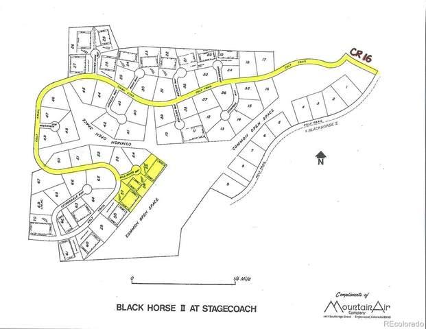 Lots 55, 56, 57 Black Horse II, Oak Creek, CO 80467 (#5537602) :: The DeGrood Team