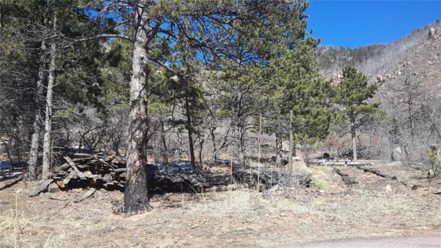 8210 Bear Dance Heights, Cascade, CO 80809 (#5540831) :: The Peak Properties Group