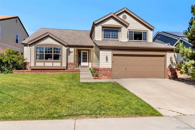 9235 Madras Court, Highlands Ranch, CO 80130 (#5540930) :: The HomeSmiths Team - Keller Williams