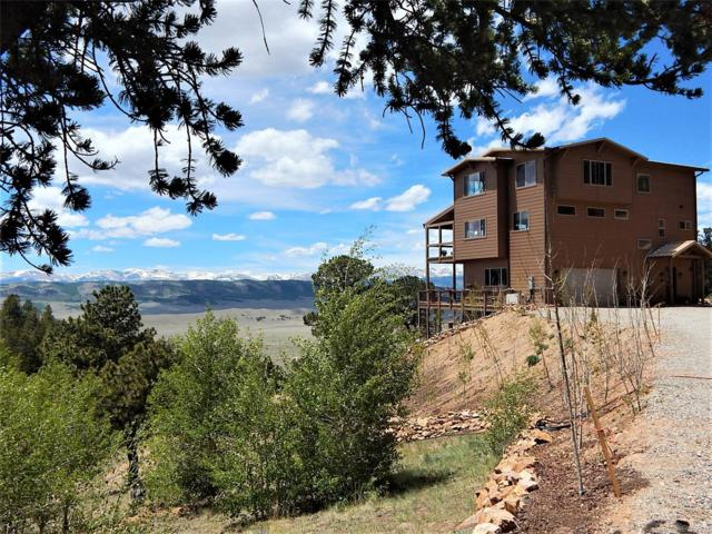 183 Ravens Way, Como, CO 80432 (#5541494) :: Colorado Home Finder Realty