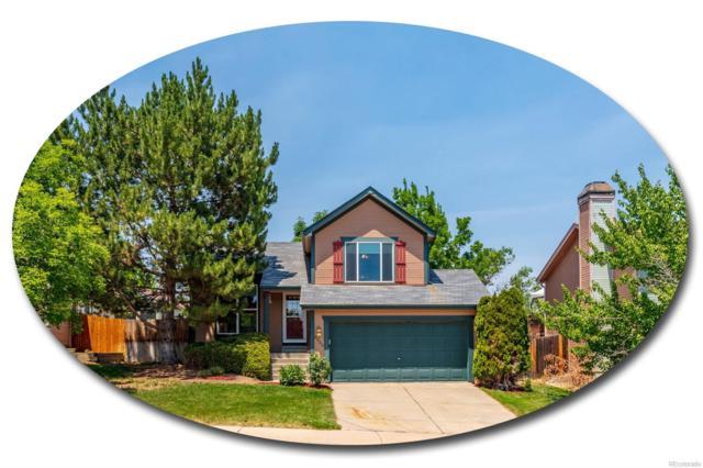 8656 Bluegrass Circle, Parker, CO 80134 (#5543586) :: My Home Team
