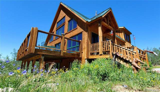 224 New York Mine Road, Idaho Springs, CO 80452 (MLS #5550954) :: 8z Real Estate
