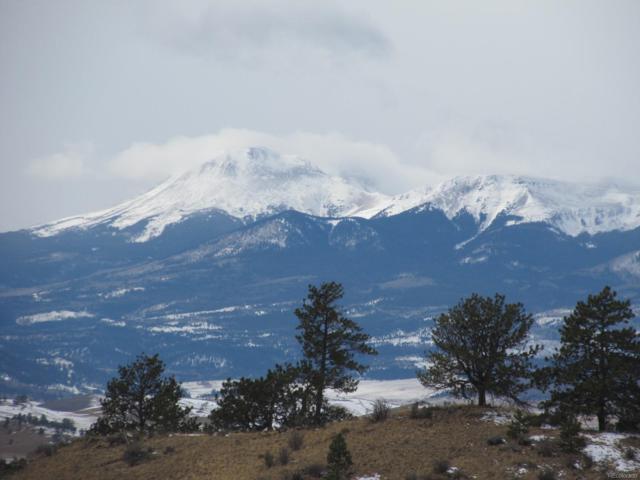 Running Bear Road, Hartsel, CO 80449 (#5553118) :: The Heyl Group at Keller Williams