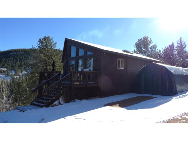 104 Brewer Street, Bailey, CO 80421 (MLS #5554802) :: 8z Real Estate