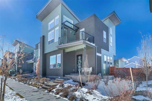 5479 Valentia Street, Denver, CO 80238 (#5556149) :: Stephanie Fryncko | Keller Williams Integrity