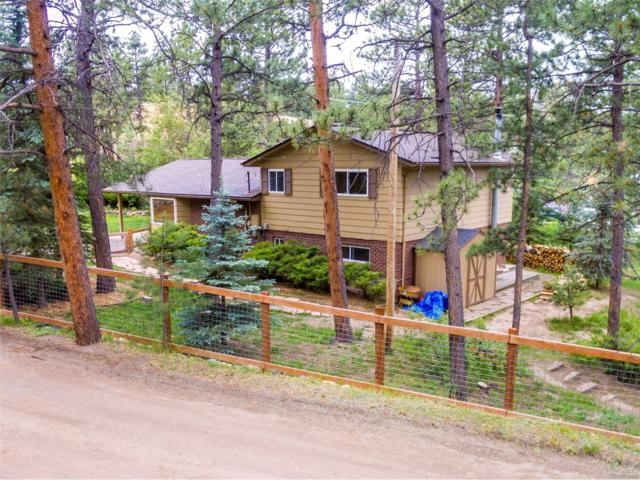 5363 S Pine Road, Evergreen, CO 80439 (#5557443) :: The City and Mountains Group