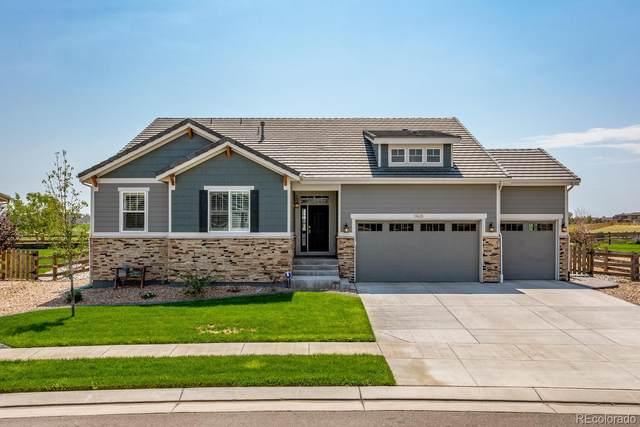 11428 Jasper Street, Commerce City, CO 80022 (MLS #5557589) :: 8z Real Estate