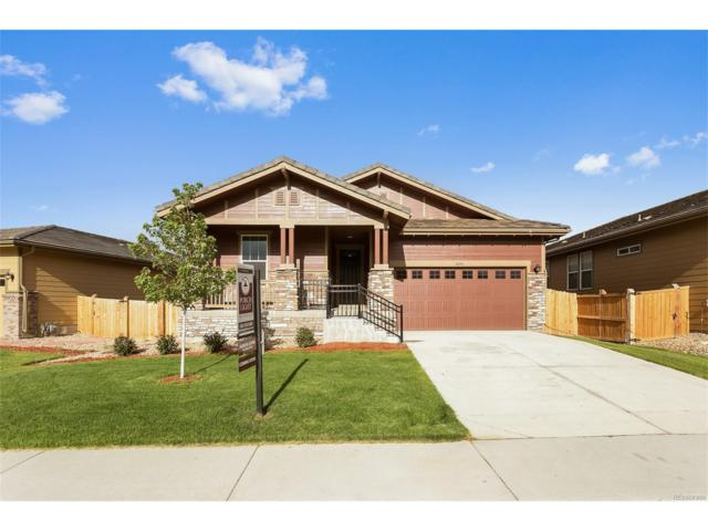 10090 Tall Oaks Street, Parker, CO 80134 (#5557750) :: The Sold By Simmons Team