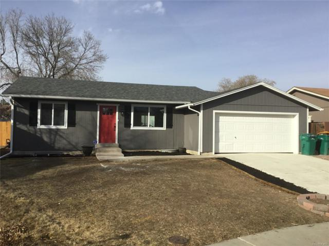 8675 W 86th Court, Arvada, CO 80005 (#5558719) :: The Galo Garrido Group