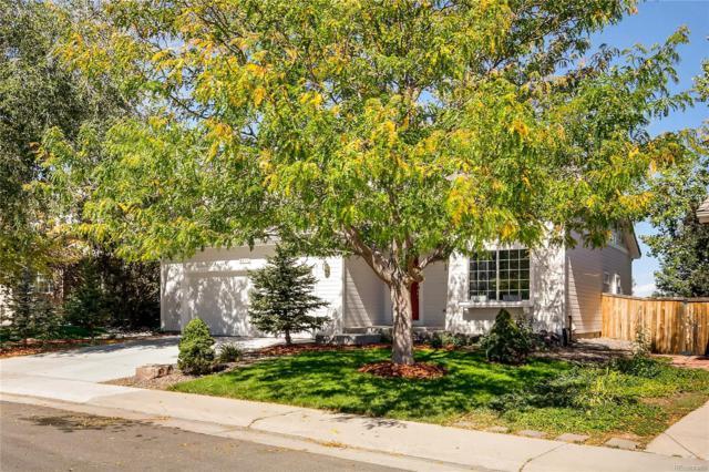 4855 Ashbrook Circle, Highlands Ranch, CO 80130 (MLS #5559015) :: 8z Real Estate