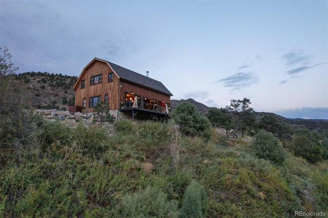 1544 County Road 45, Howard, CO 81233 (#5566900) :: The DeGrood Team