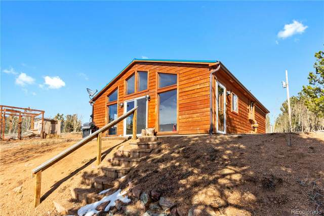 107 Price Street, Bailey, CO 80421 (#5567953) :: HomeSmart