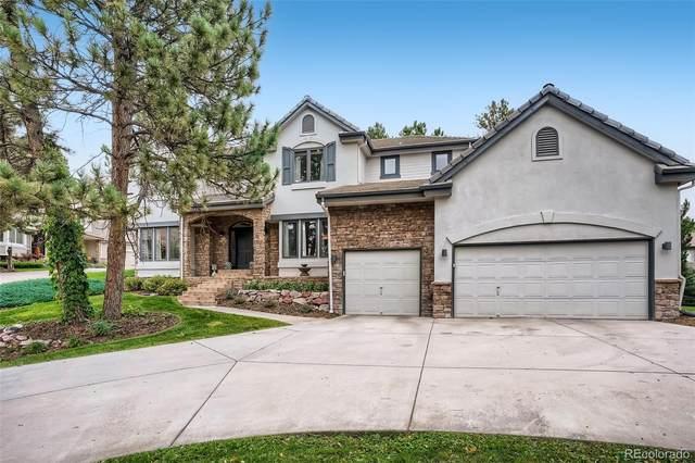 843 Swandyke Court, Castle Rock, CO 80108 (#5573961) :: Kimberly Austin Properties