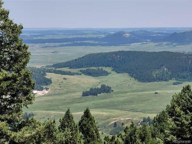 13220 Deer Ridge Way, Larkspur, CO 80118 (#5575895) :: Own-Sweethome Team