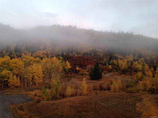 31515 Gooseberry Lane, Steamboat Springs, CO 80487 (#5577176) :: West + Main Homes