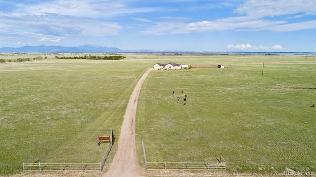 9890 N Log Road, Calhan, CO 80808 (#5578091) :: The Colorado Foothills Team | Berkshire Hathaway Elevated Living Real Estate