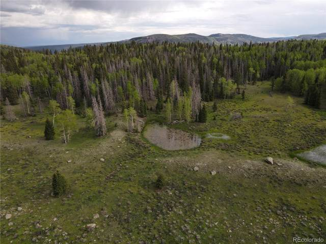 Vacant Land, Antonito, CO 81102 (#5579257) :: The DeGrood Team