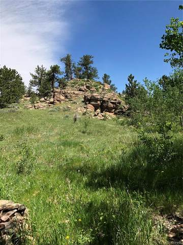 53 & 151 Ada Court, Red Feather Lakes, CO 80545 (#5579901) :: Berkshire Hathaway HomeServices Innovative Real Estate