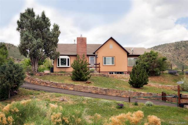 225 Highway 8, Morrison, CO 80465 (#5579914) :: Peak Properties Group