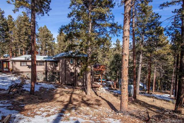 33591 Lake Lane, Pine, CO 80470 (#5580656) :: The DeGrood Team