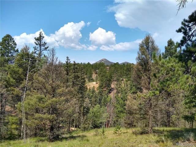 638 W Bison Creek Trail, Florissant, CO 80816 (#5581790) :: The DeGrood Team