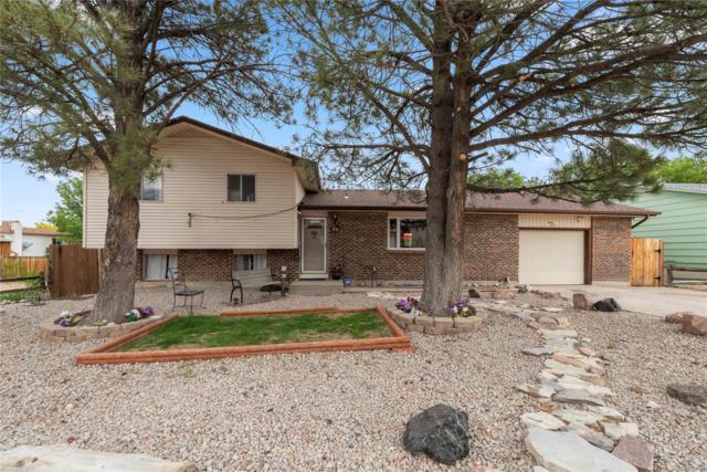 4318 Wilderness Trail, Pueblo, CO 81008 (MLS #5582328) :: 8z Real Estate