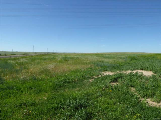 Date, Deer Trail, CO 80105 (MLS #5582523) :: 8z Real Estate