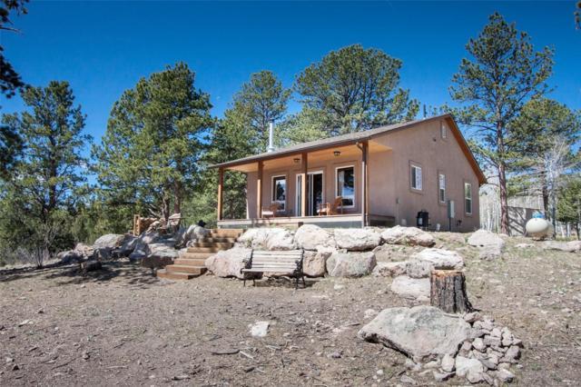 156 Powderhorn Lane, Florissant, CO 80816 (#5584482) :: Wisdom Real Estate