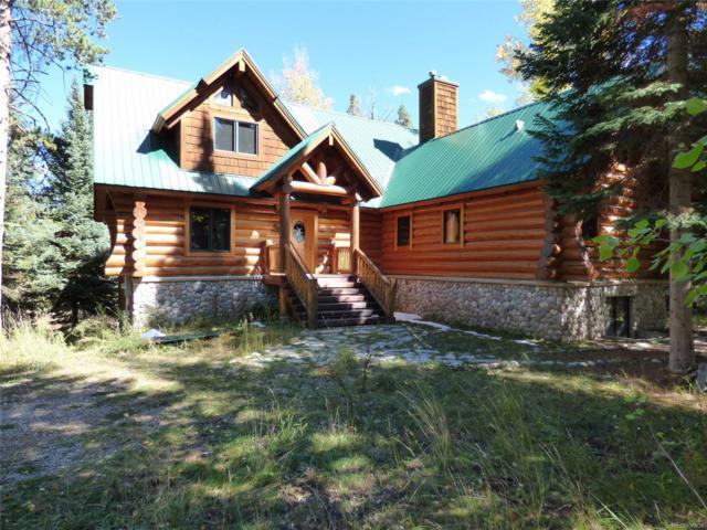 26715 Katy Court, Clark, CO 80428 (#5585244) :: Bring Home Denver