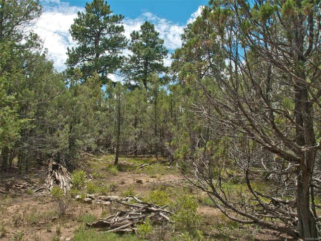 1519 Antelope Way, Crestone, CO 81131 (MLS #5585923) :: 8z Real Estate