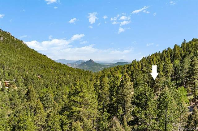 0 Shiloh Road, Conifer, CO 80433 (#5585980) :: The Colorado Foothills Team | Berkshire Hathaway Elevated Living Real Estate