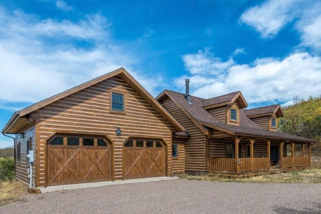 30050 Hibbert Lane, Oak Creek, CO 80467 (#5588218) :: 5281 Exclusive Homes Realty