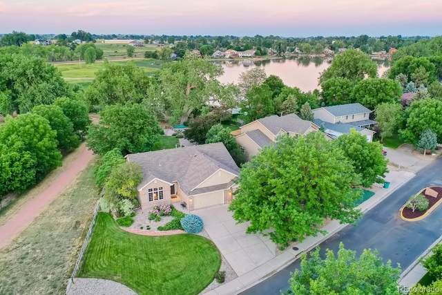 186 Camino Real, Fort Collins, CO 80524 (#5591747) :: The Gilbert Group