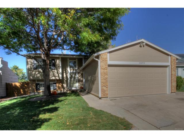 19093 E Oberlin Drive, Aurora, CO 80013 (MLS #5592130) :: 8z Real Estate