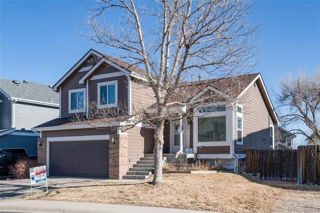 7610 Halleys Drive, Littleton, CO 80125 (#5592415) :: Chateaux Realty Group